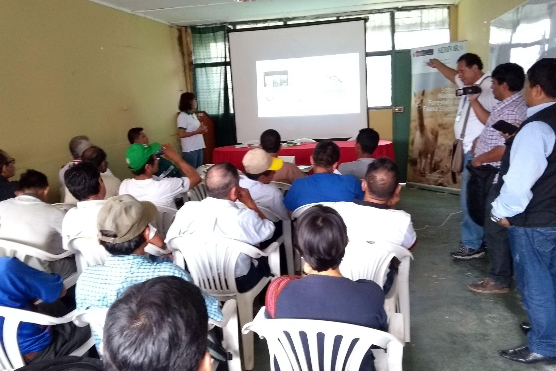 Minagri promueve en Cajamarca el aprovechamiento sostenible de recursos forestales. ANDINA/Difusión