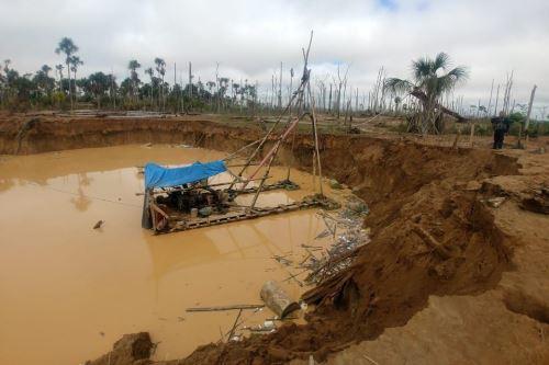 Mineros deforestaron en 2017 1,700 hectáreas en Madre de Dios.Foto:  ANDINA/Difusión