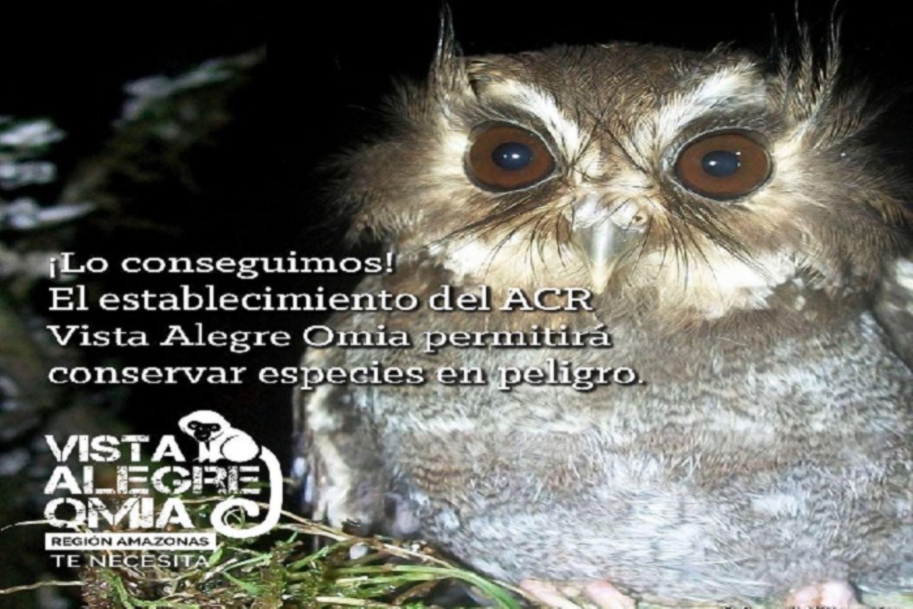 La región Amazonas ya cuenta con dos Áreas de Conservación Regional: Vista Alegre Omia y Bosques Tropicales Estacionalmente Secos del Marañón, áreas de gran importancia ambiental en las que se conservan especies únicas en el mundo y servicios ecosistémicos en beneficio de la población de seis distritos y tres provincias.