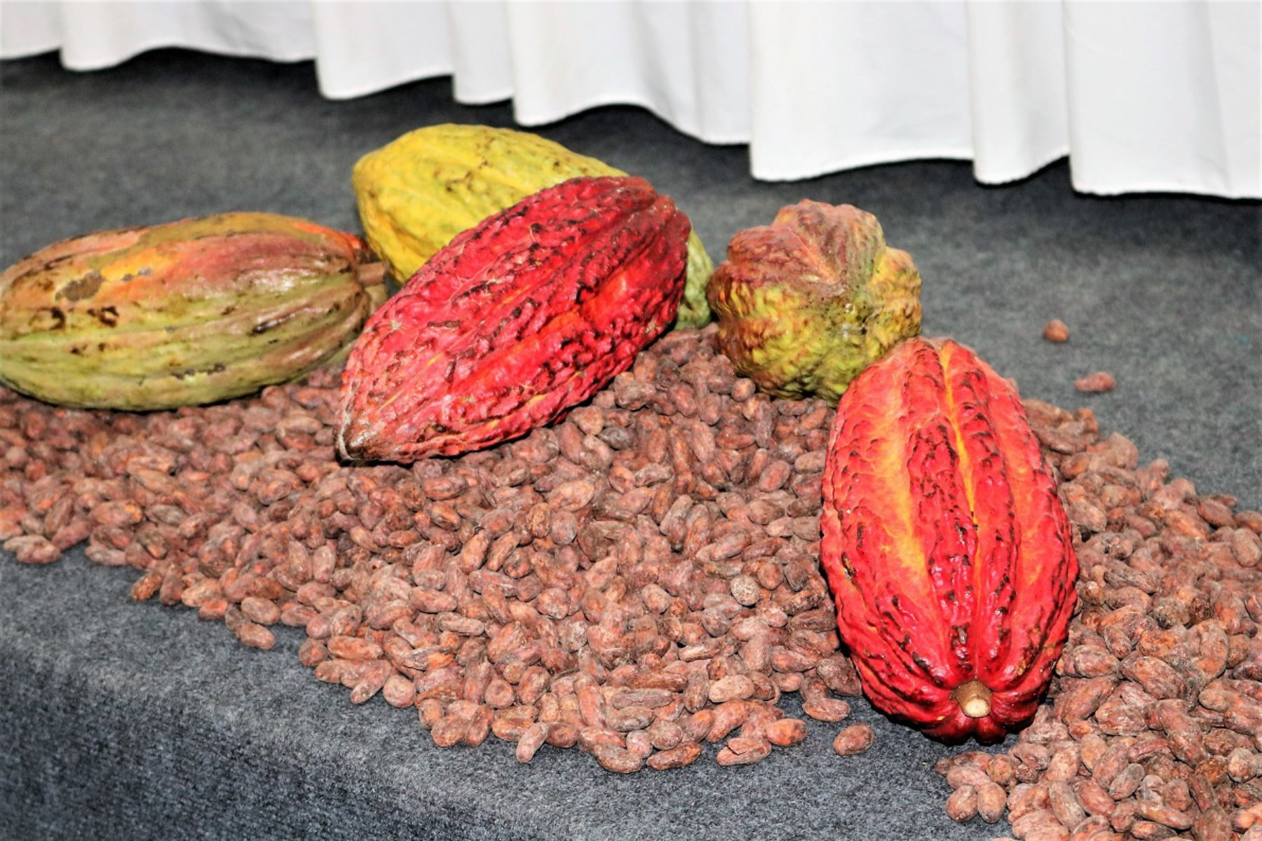 Peruvian chocolate claims first place at well-known London fair