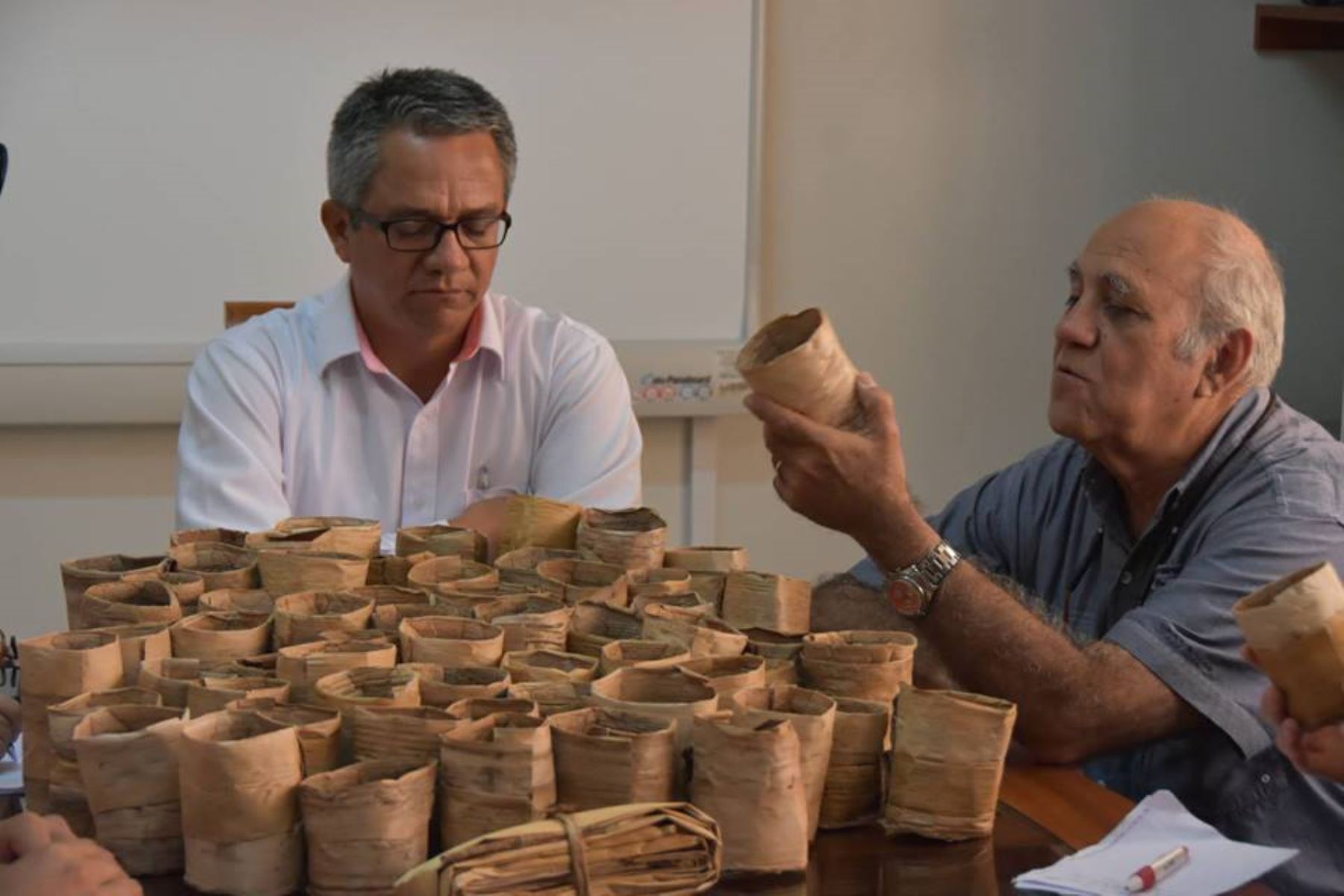 San Martín inicia venta de bolsas biodegradables elaboradas con corteza de plátano. ANDINA