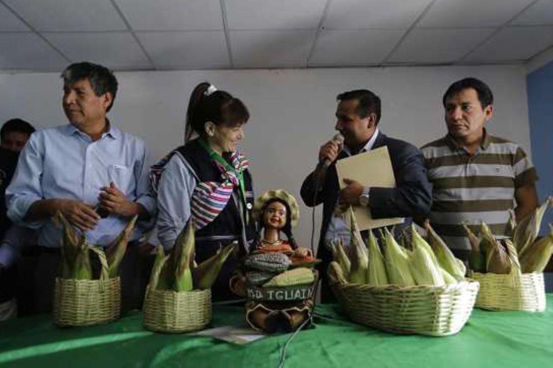 El trabajo comprometido de las autoridades del distrito de Iguaín, en la provincia de Huanta, en Ayacucho, ha permitido reducir la anemia de 65% a 12% en tres años, convirtiéndose en imagen y ejemplo para el país en la lucha contra este flagelo, destacó la ministra de Salud, Silvia Pessah, durante su visita a esta localidad.