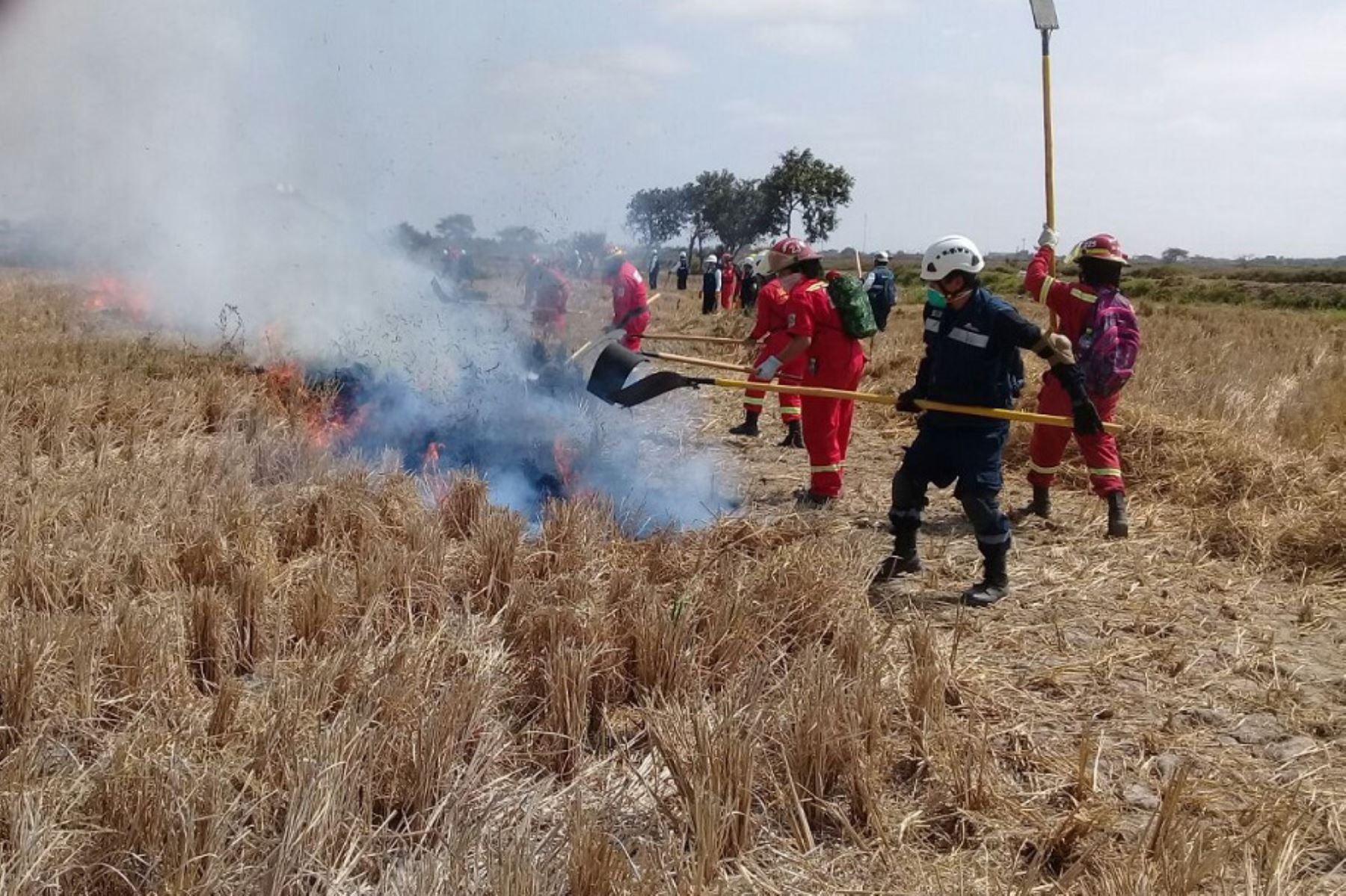 El Servicio Nacional de Áreas Naturales Protegidas por el Estado (Sernanp), organismo adscrito del Ministerio del Ambiente, inició la formación de las nuevas brigadas responsables de las acciones de prevención y control de incendios forestales en la provincia de Pacasmayo de la región La Libertad.