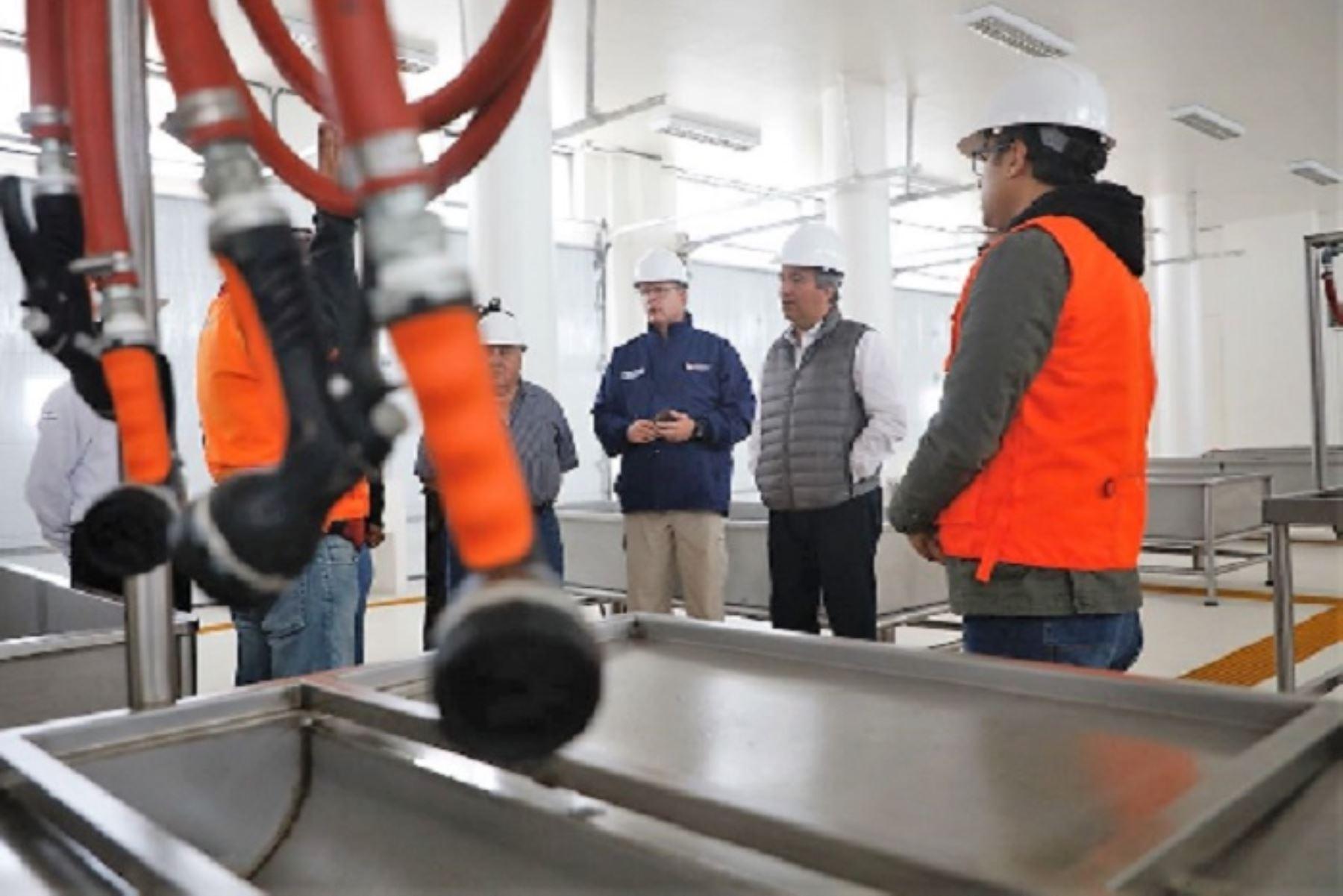 Desembarcadero pesquero modernizado. ANDINA/Difusión