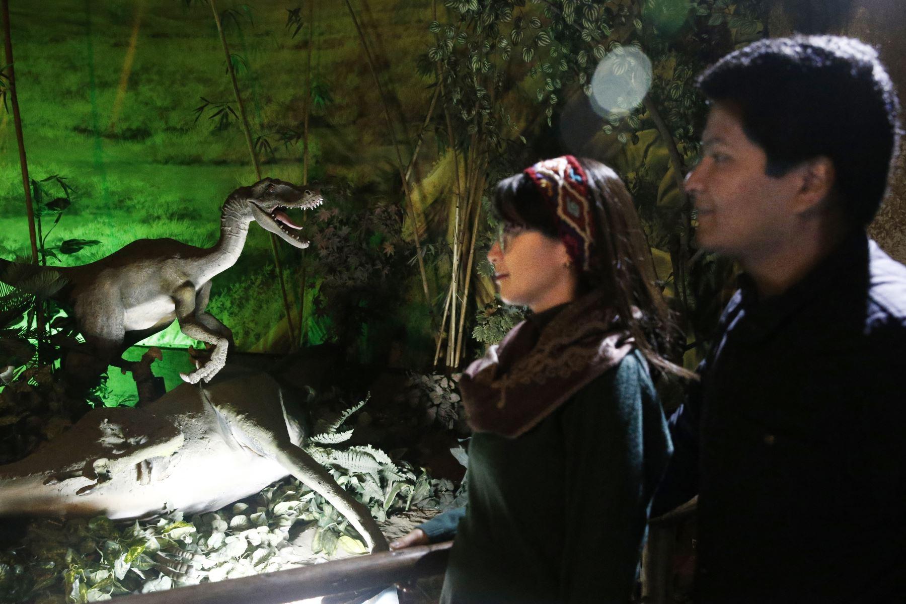 Galeria Fotografica Agencia Peruana De Noticias Andina Andina El parque zoológico huachipa es una institución cultural y unidad de conservación de fauna y flora silvestre, que se localiza en el distrito de ate. andina