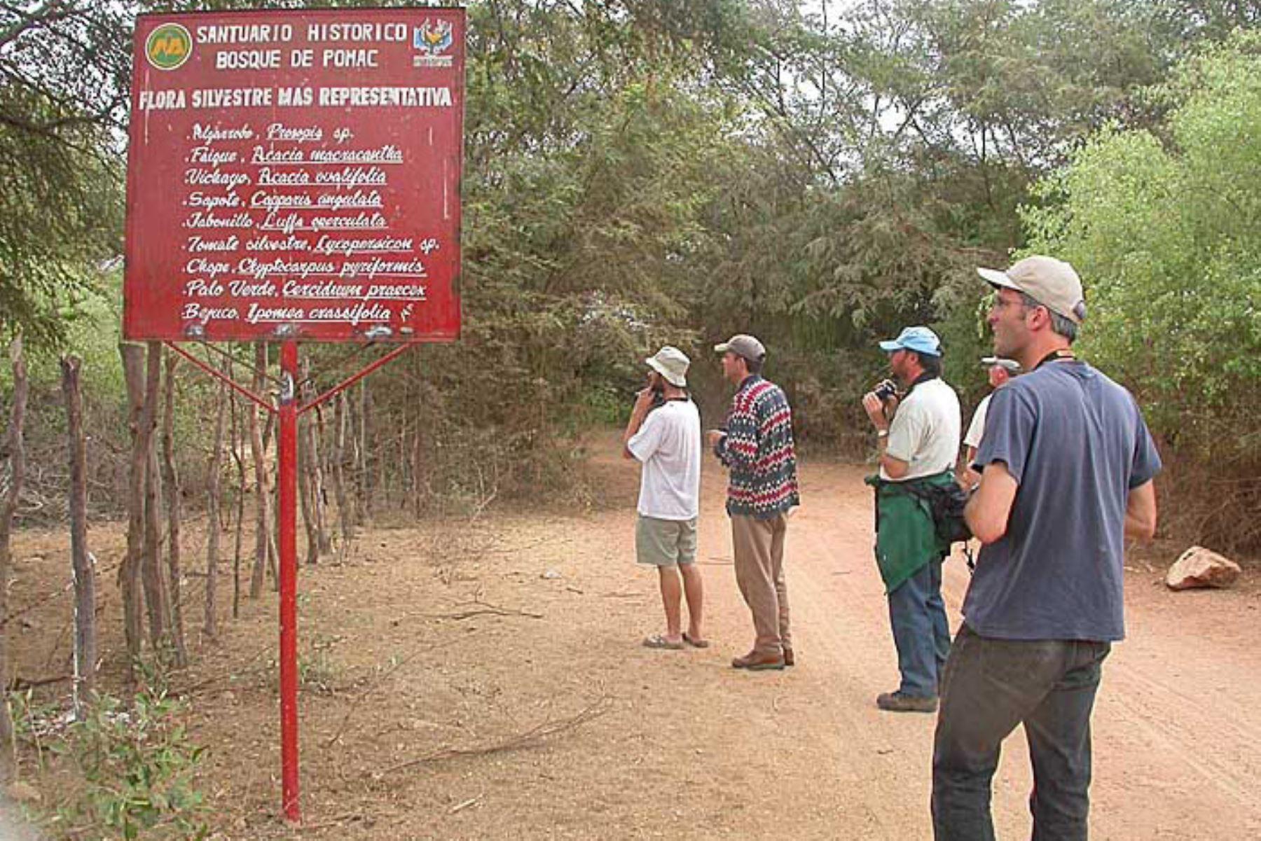 Incendio en Santuario de Pómac no afecta a zonas de visita turística. ANDINA/archivo