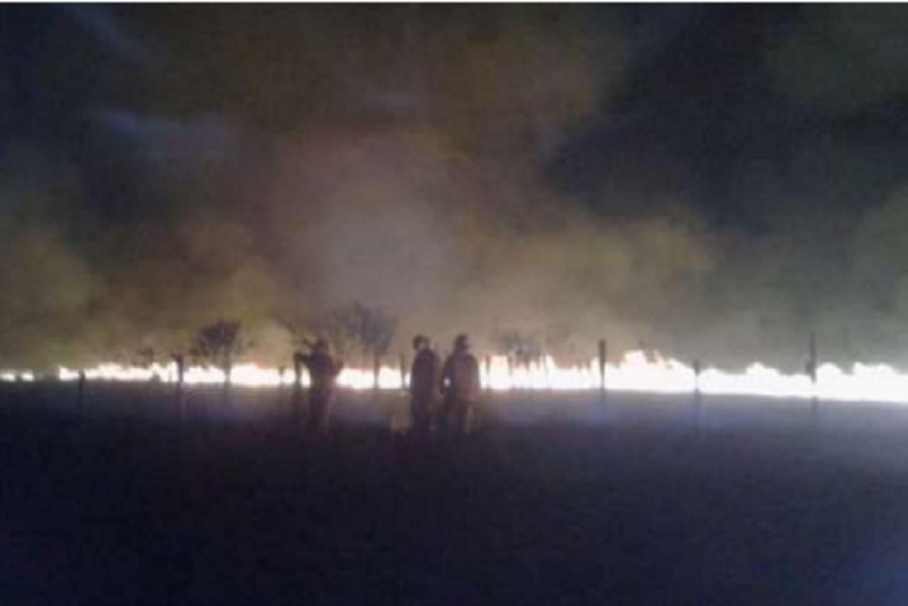 De acuerdo al Cuerpo de Bomberos, el siniestro se originó debido a la quema de basura por parte de pobladores de la zona en un área cercana a 5 hectáreas.