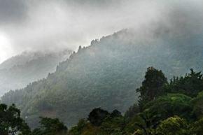 También se esperan ráfagas de viento de hasta 45 kilómetros por hora, principalmente en los departamentos de Madre de Dios y Ucayali.ANDINA/Difusión