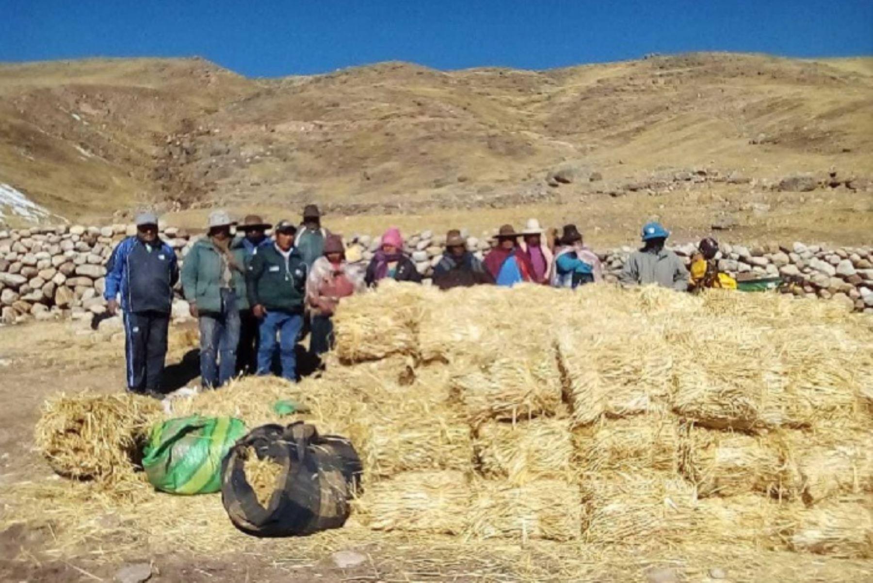 Durante los meses de abril a junio, el Minagri ejecutó al 100% el Plan Multisectorial de Heladas y Friaje 2018, con los que se entregaron más de 7,000 kits veterinarios y otras herramientas necesarias para que los pobladores puedan afrontar esta dura época de heladas.