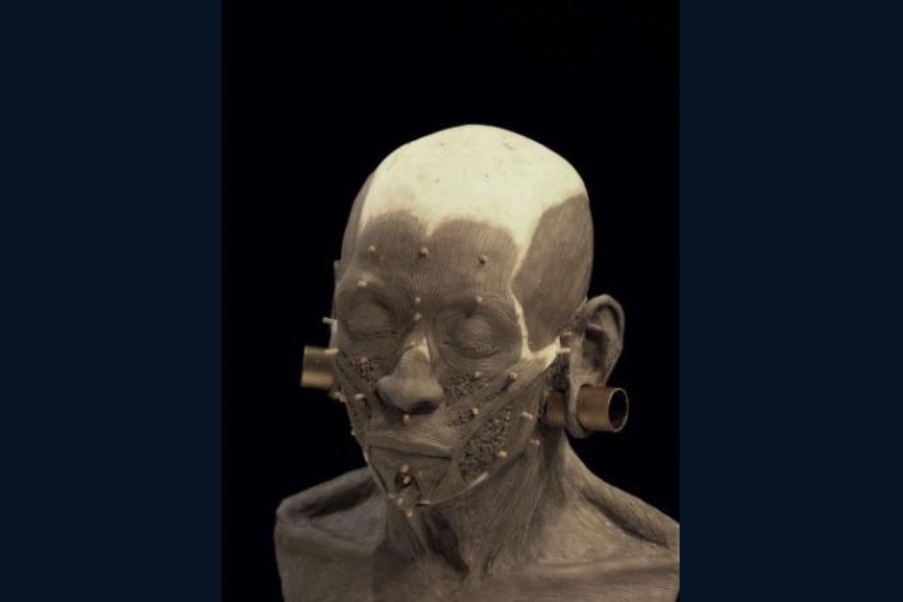 El aporte de la tecnología tridimensional a la arqueología y la antropología peruana viene siendo decisivo para conocer la fisonomía de personajes que ejercieron el gobierno en importantes civilizaciones precolombinas como Moche y Wari. Los hallazgos de las osamentas y ajuares funerarios de estas autoridades del antiguo Perú asombran al mundo. INTERNET/Medios