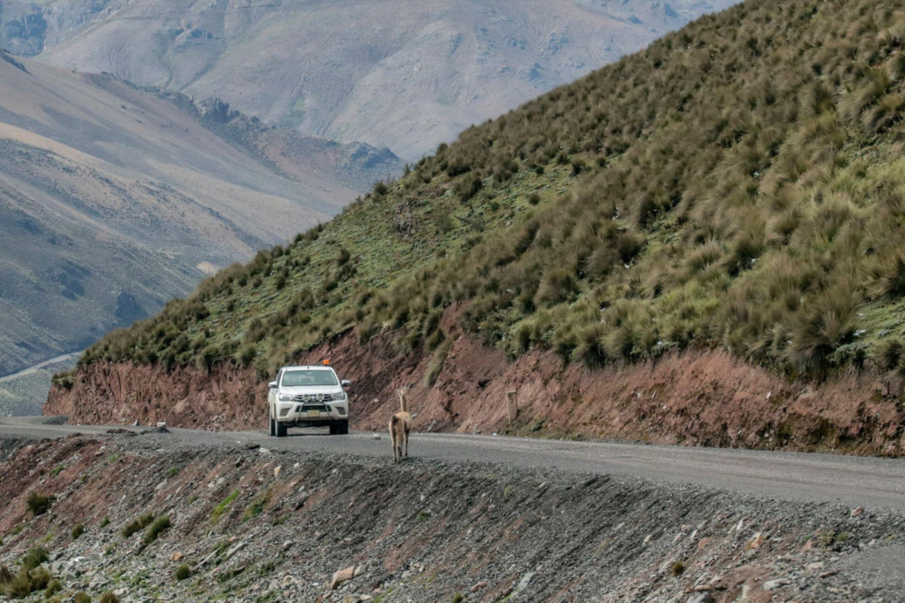 MTC invertirá S/ 393 millones para continuar trabajos en la carretera Lima-Canta-Huayllay. ANDINA/Difusión
