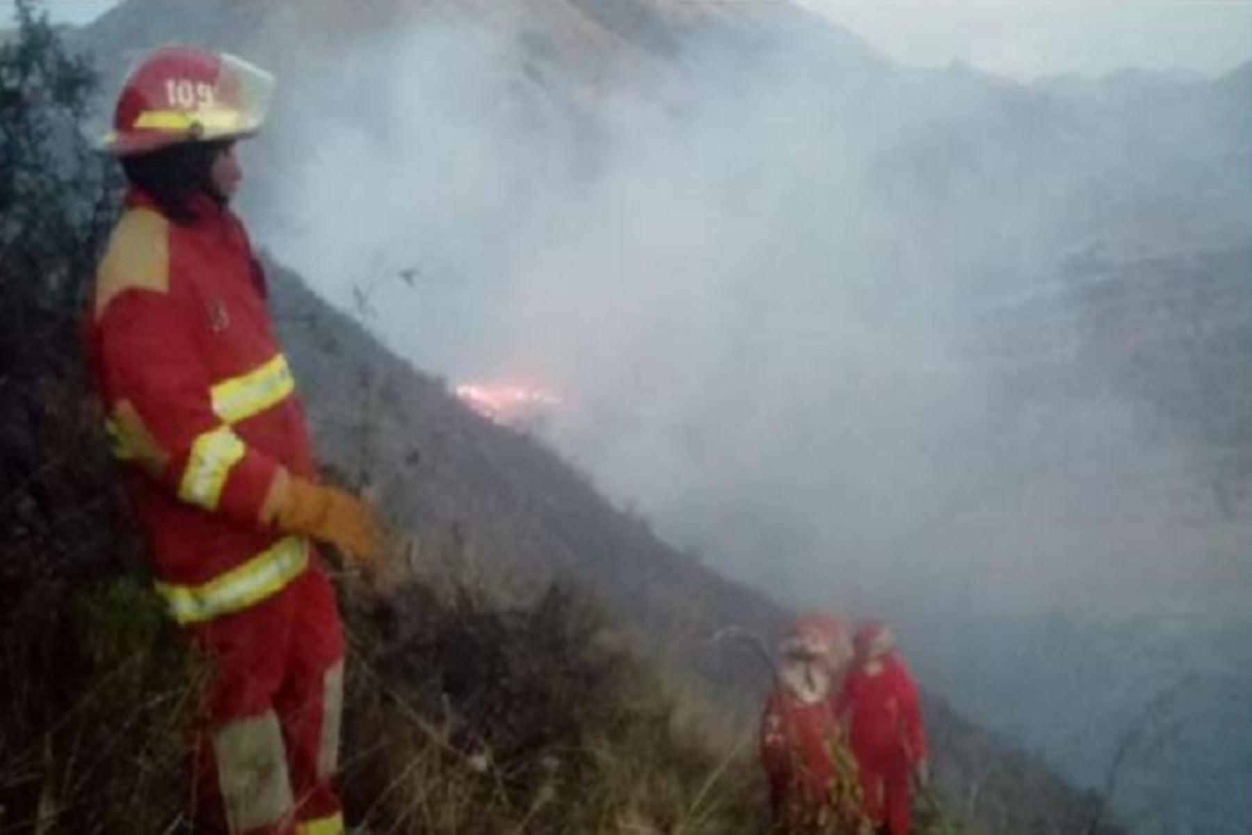 Bomberos de los distritos de Urcos, San Jerónimo y San Sebastián de la región Cusco, extinguieron en su totalidad el incendio forestal que se produjo ayer en el Parque Arqueológico de Pikillaqta, perteneciente al sector Pampa Raqchi-Rayallacta, anexo del distrito de Andahuaylillas, provincia de Quispicanchi, en la región Cusco.