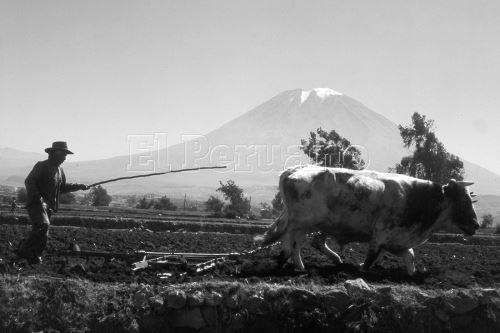 Arequipa celebra su 478° aniversario