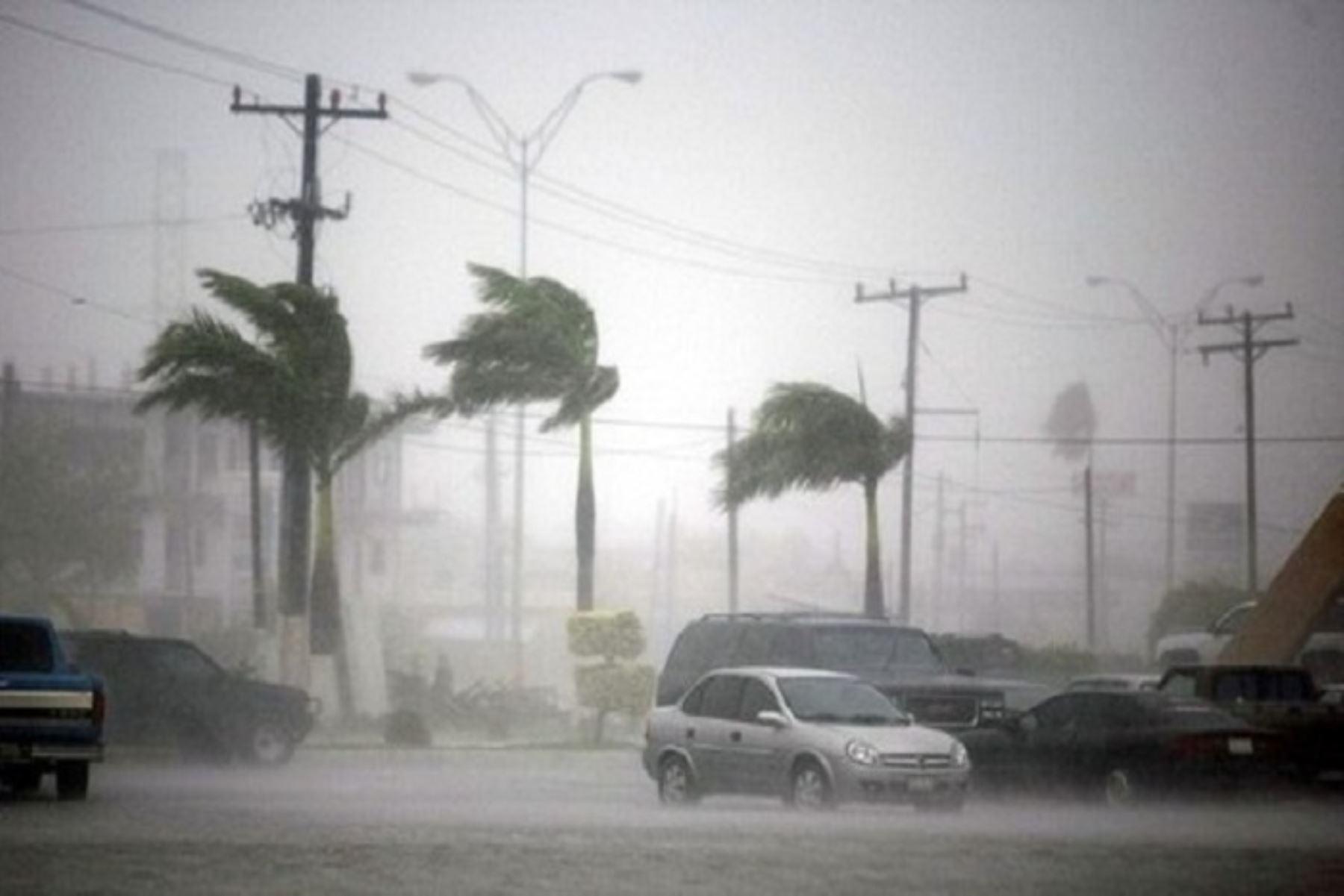 El Senamhi pronosticó ráfagas de viento en Ica superiores a 60 kilómetros por hora. Foto: ANDINA/Difusión