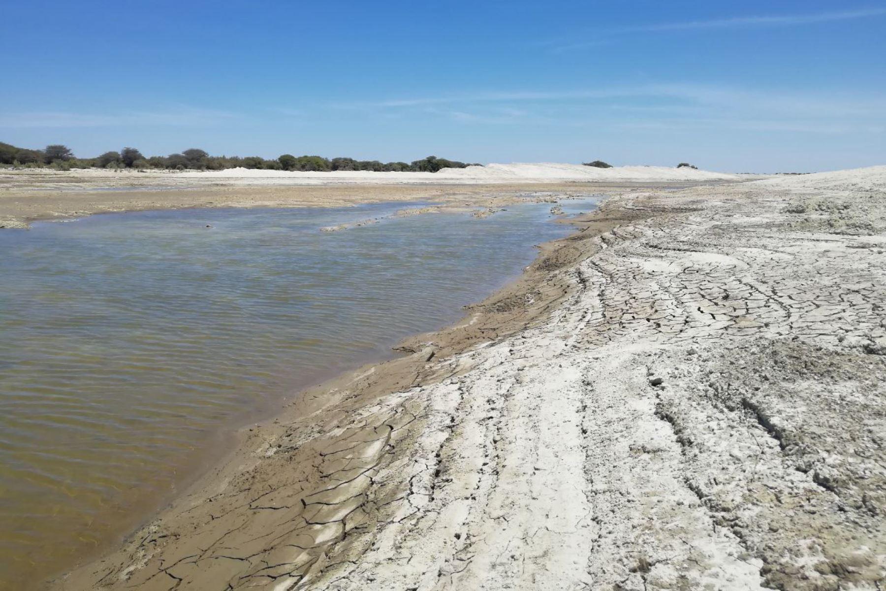 Autoridad para la Reconstrucción con Cambios financia obras en 57 puntos críticos para evitar el desborde de ríos durante la temporada de lluvias.Foto:  ANDINA/Difusión