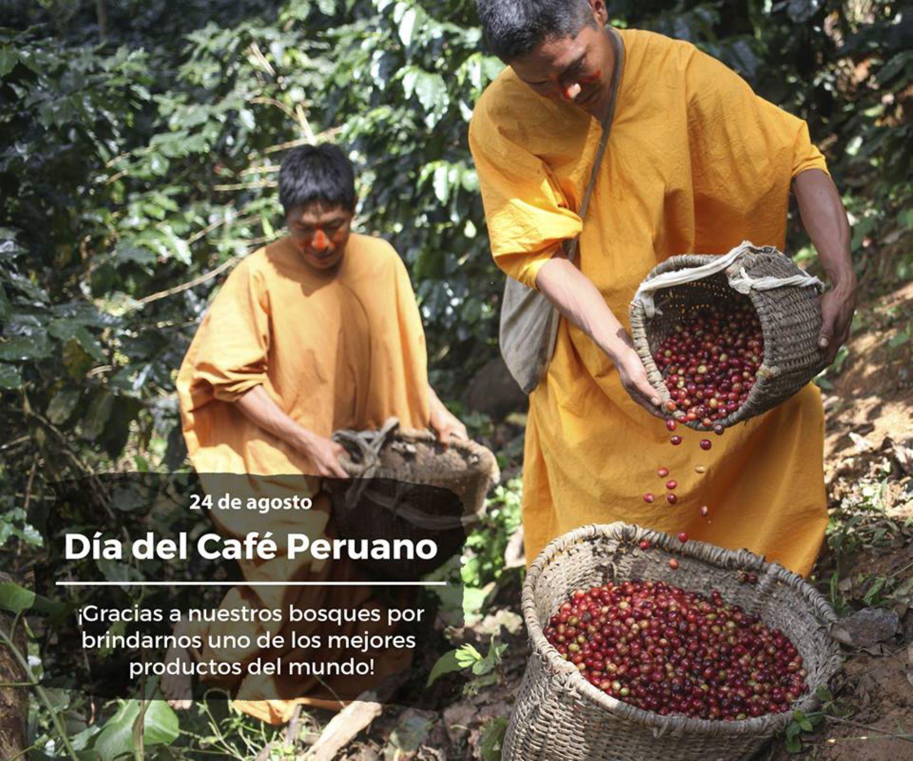 La experiencia de lograr un aromático y exquisito café de bosques conservados ha convertido a los caficultores de las comunidades nomatsiguengas de Mayni y Shora de Alto Coriri, en la región Junín, en un ejemplo para las comunidades indígenas que empiezan a mejorar sus cultivos de café con los incentivos y asistencia técnica del Programa Bosques del Ministerio del Ambiente (Minam).