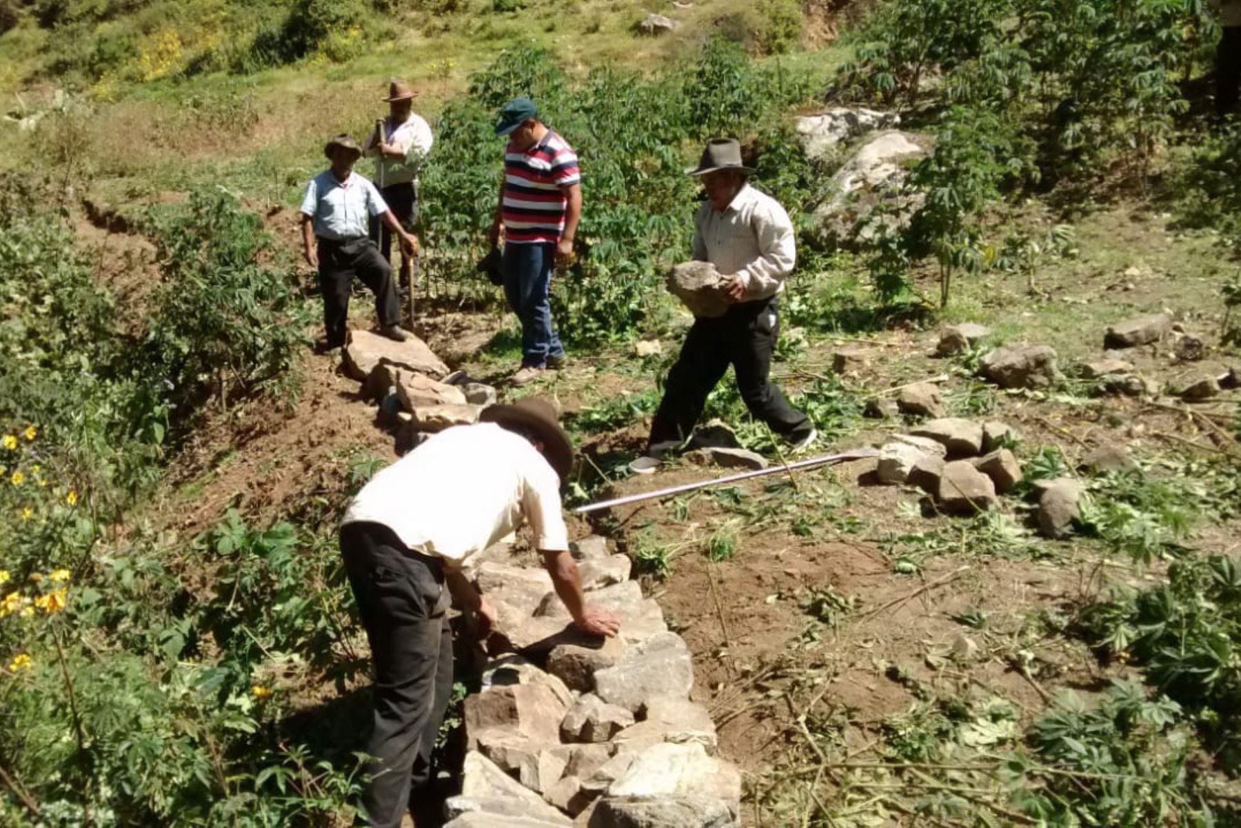 áncash Proyecto Busca Mejorar Producción Agrícola En Yungay