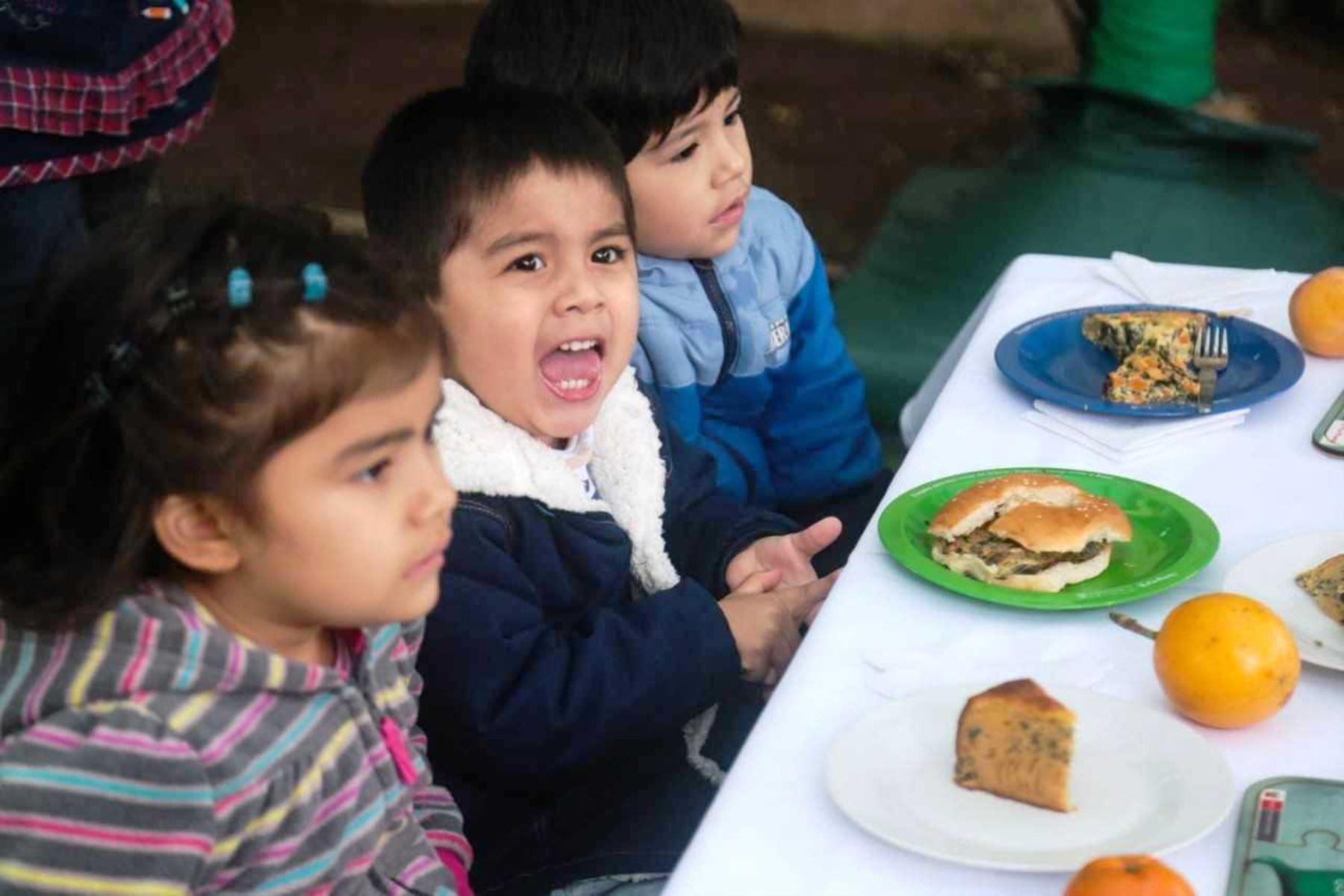 Siete alternativas de loncheras antianemia que sus hijos pueden llevar al colegio. Foto: ANDINA/Difusión.