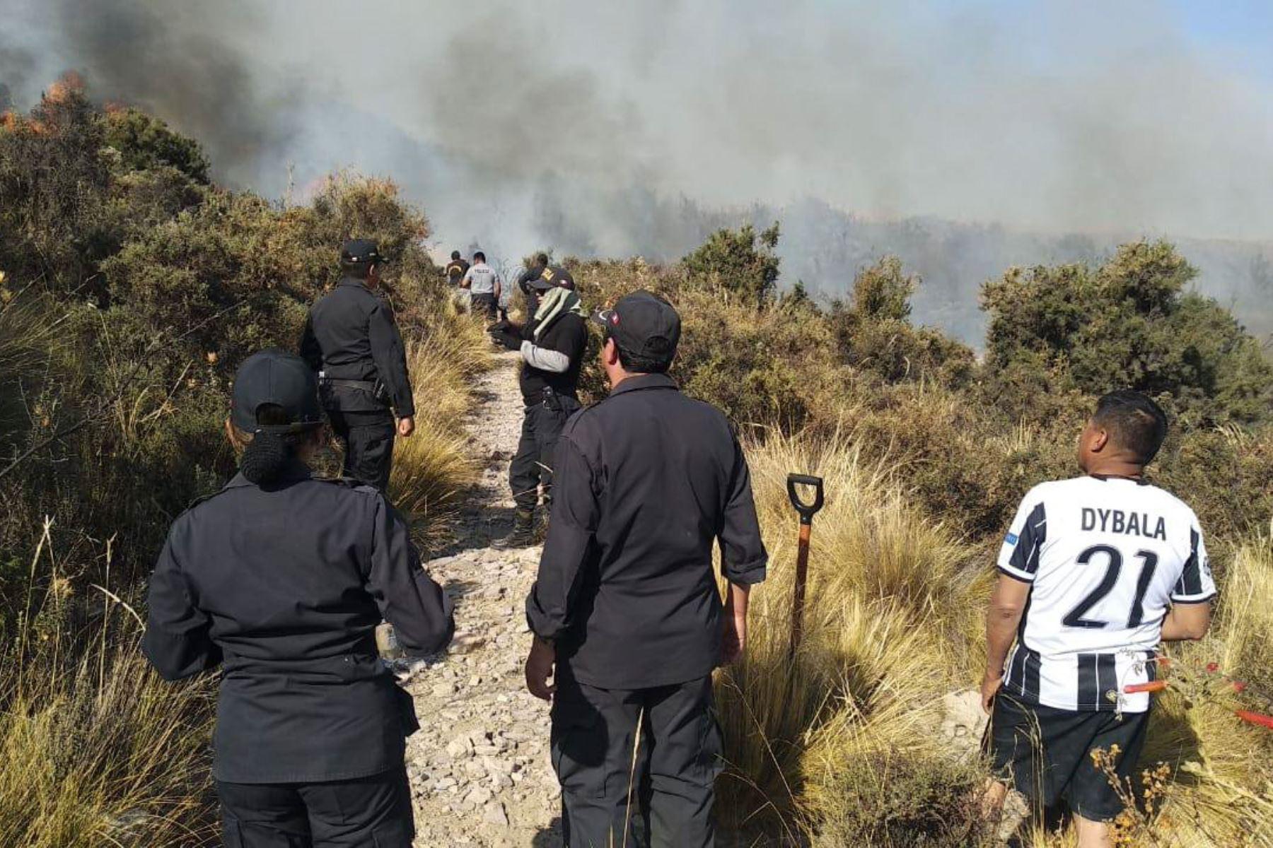 Incendio forestal afecta pastizales y otras áreas naturales de Arequipa. ANDINA/Difusión