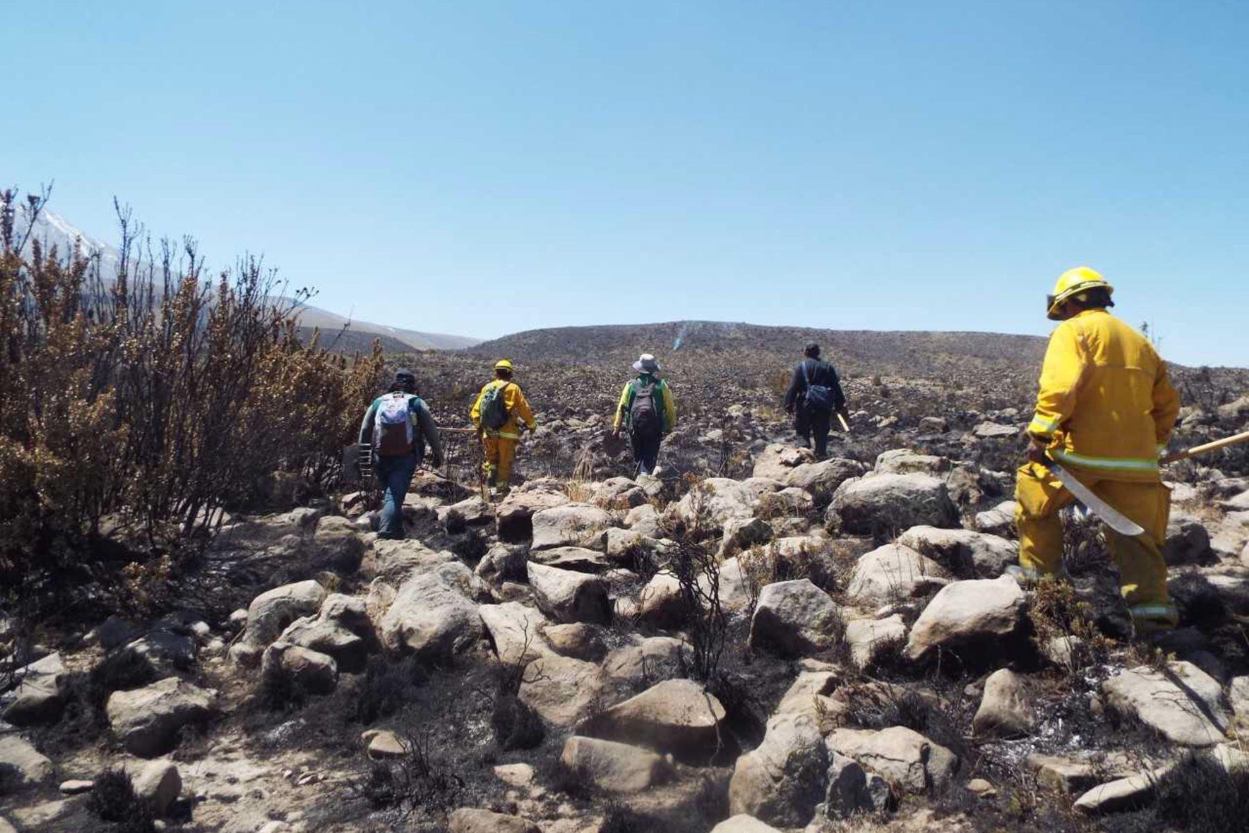 Al menos 70 personas, entre efectivos policiales y pobladores del distrito de Pocsi, ubicado en Arequipa, participan en labores de liquidación de posibles focos de fuego en la zona donde se registró el incendio forestal, que en la víspera fue sofocado con apoyo de la Fuerza Aérea del Perú (FAP). ANDINA/Difusión