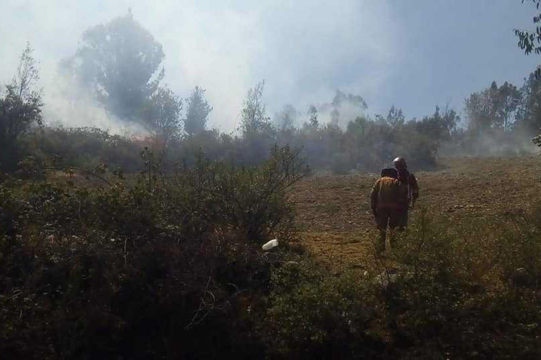 Un incendio forestal destruyó 10 hectáreas de plantaciones en el caserío de Uquía, centro poblado de Paria Wilcahuain, en el distrito de Independencia, región Áncash, reportó la Plataforma Distrital de Defensa Civil.