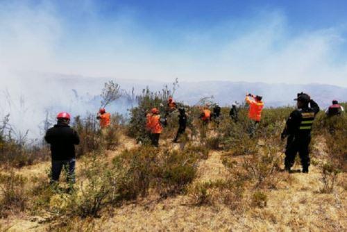 Personal de bomberos y de la municipalidad provincial de Santa lograron extinguir el incendio forestal que se inició el jueves y afectó el vivero municipal del distrito de Chimbote, informó el Instituto Nacional de Defensa Civil (Indeci). ANDINA/Difusión