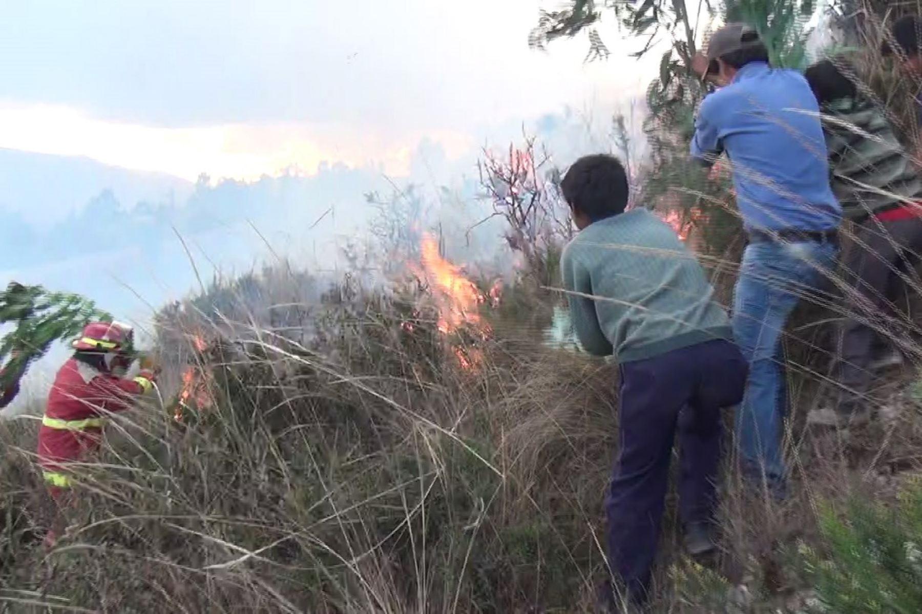 Extinguen incendios forestales en regiones Amazonas y Tumbes. ANDINA/Archivo