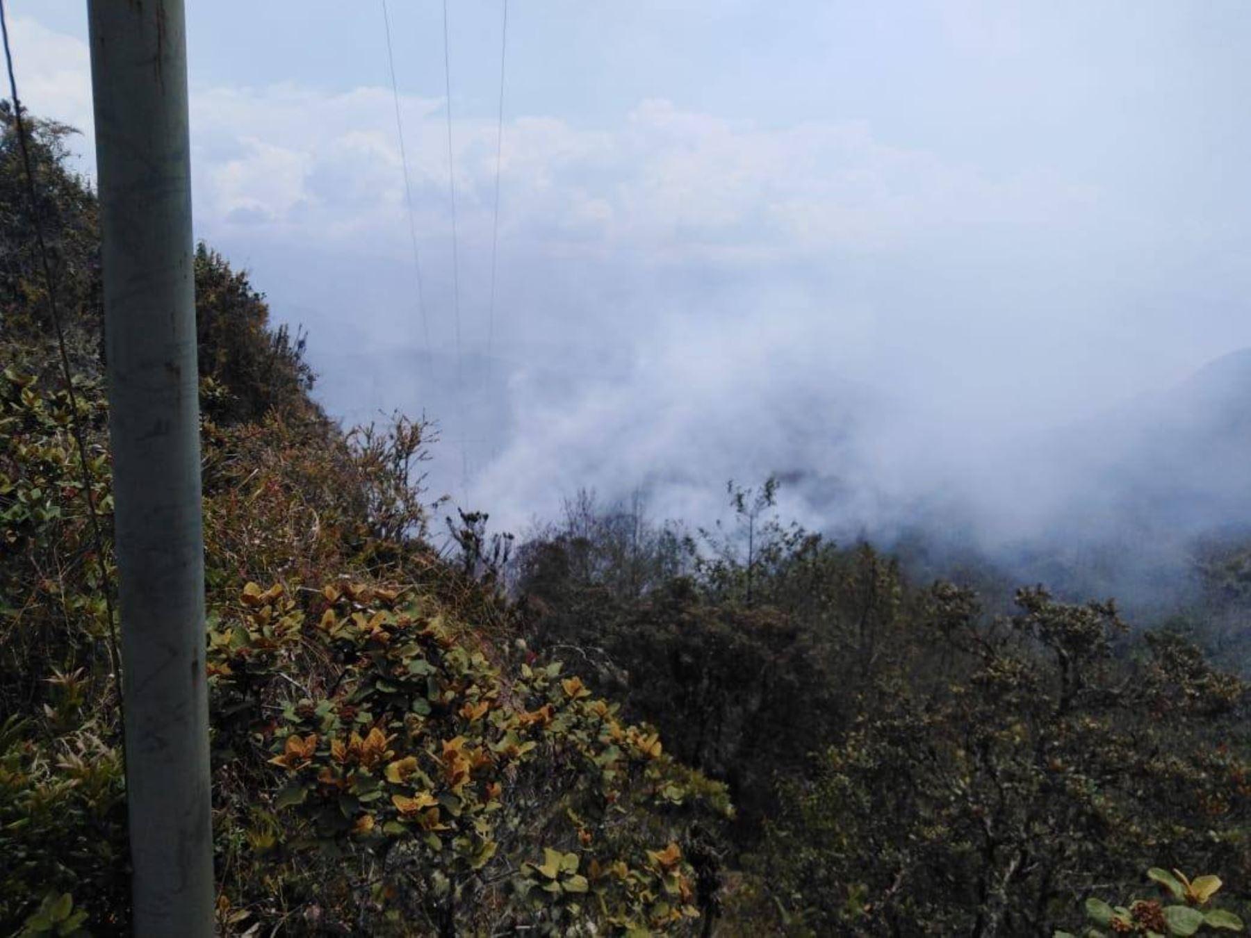 Dos incendios forestales ocurridos en la región Amazonas fueron ser extinguidos sin dejar daños personales, informó el Instituto Nacional de Defensa Civil (Indeci) al Centro de Operaciones de Emergencia Nacional (COEN). ANDINA/Difusión