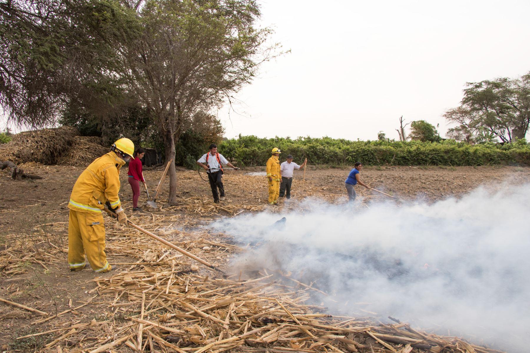 Santuario Histórico Bosque de Pómac tiene dos nuevas brigadas comunales para la atención de incendios forestales dentro y fuera del área natural protegida.