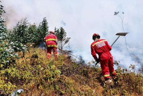 Plataforma de Defensa Civil controla incendios forestales en Cajamarca. ANDINA