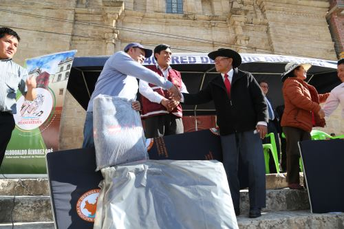 Entregan ayuda humanitaria a afectados por heladas y nevadas en Huancavelica. ANDINA