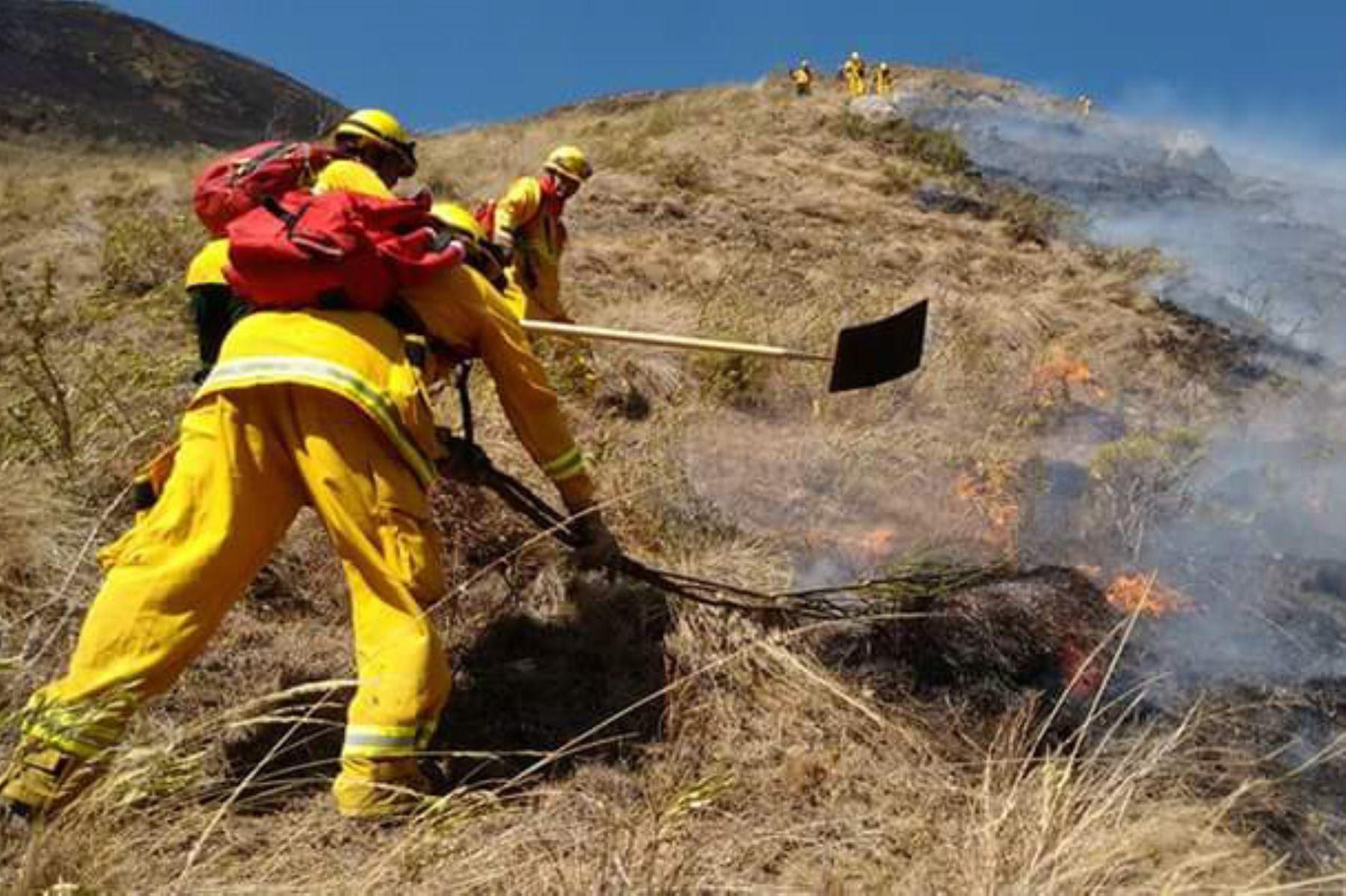 Un incendio se registra en el sector Paleria y Pomac II, en el área del Santuario Histórico Bosque de Pómac, área natural protegida ubicada a 31.5 kilómetros de Chiclayo, en el distrito de Pítipo, provincia de Ferreñafe, región Lambayeque.