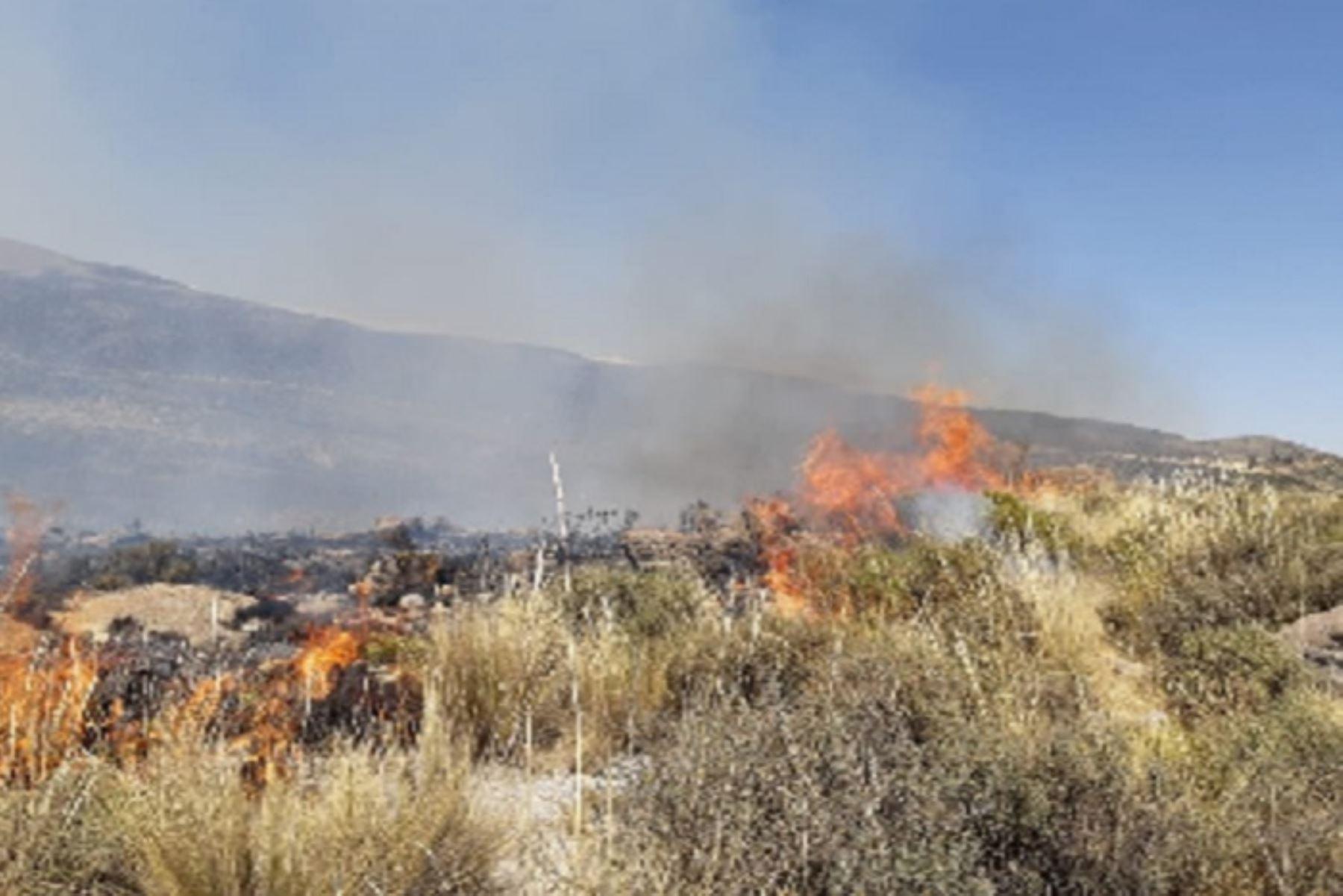 Dos helicópteros de la Fuerza Aérea del Perú (FAP) Bambi Bucket, llegará a la Ala Aérea Nº 3 para sumarse a las operaciones aéreas de mitigación del incendio forestal que se registra desde el último viernes en el distrito de Pocsi, en la provincia y región Arequipa.