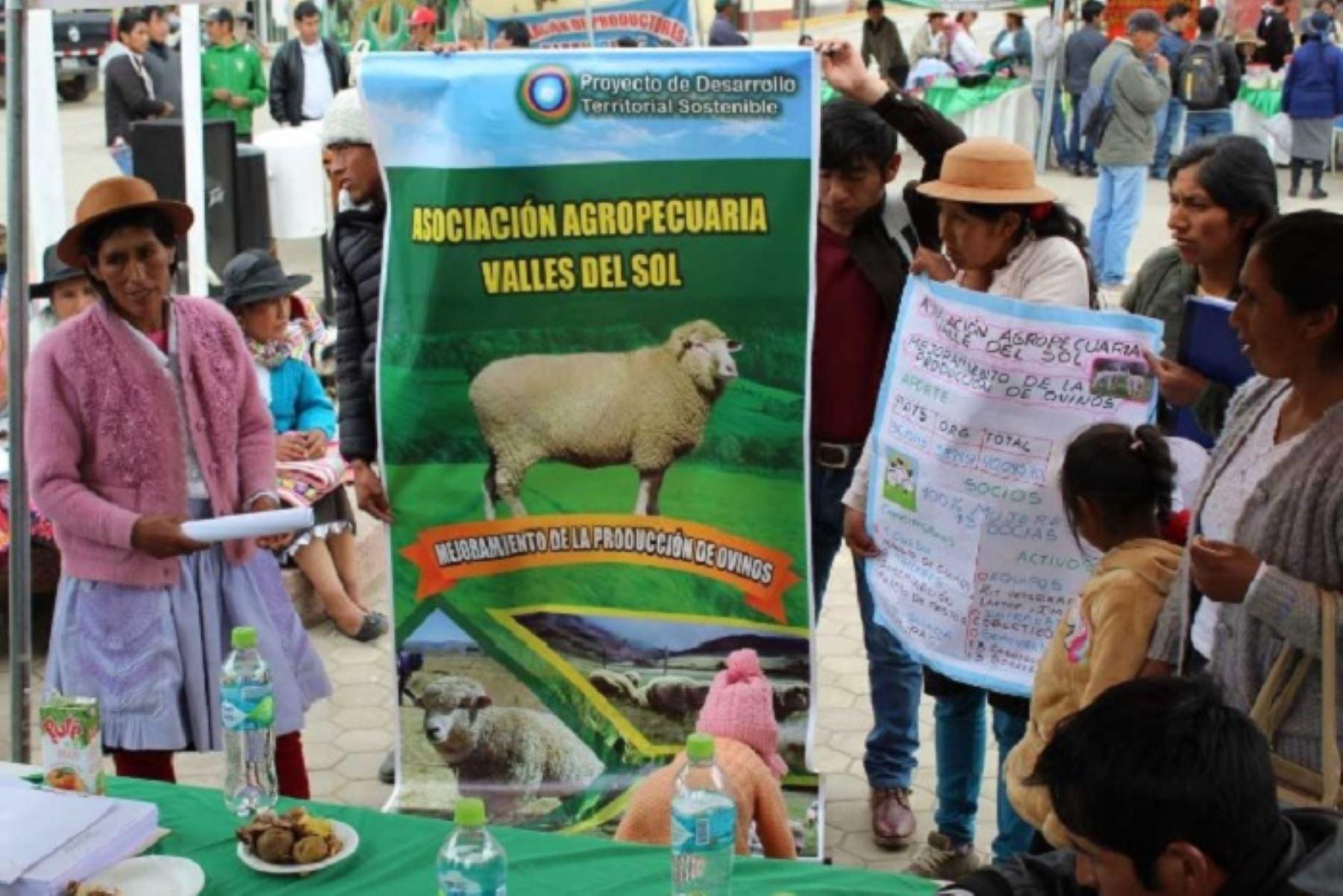 Minagri cofinanciará 38 emprendimientos rurales en Huancavelica