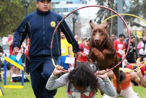 """Mascotón 2018"""", promueve estilo de vida saludable a través del ejercicio,  entre los ciudadanos y sus mascotas"""