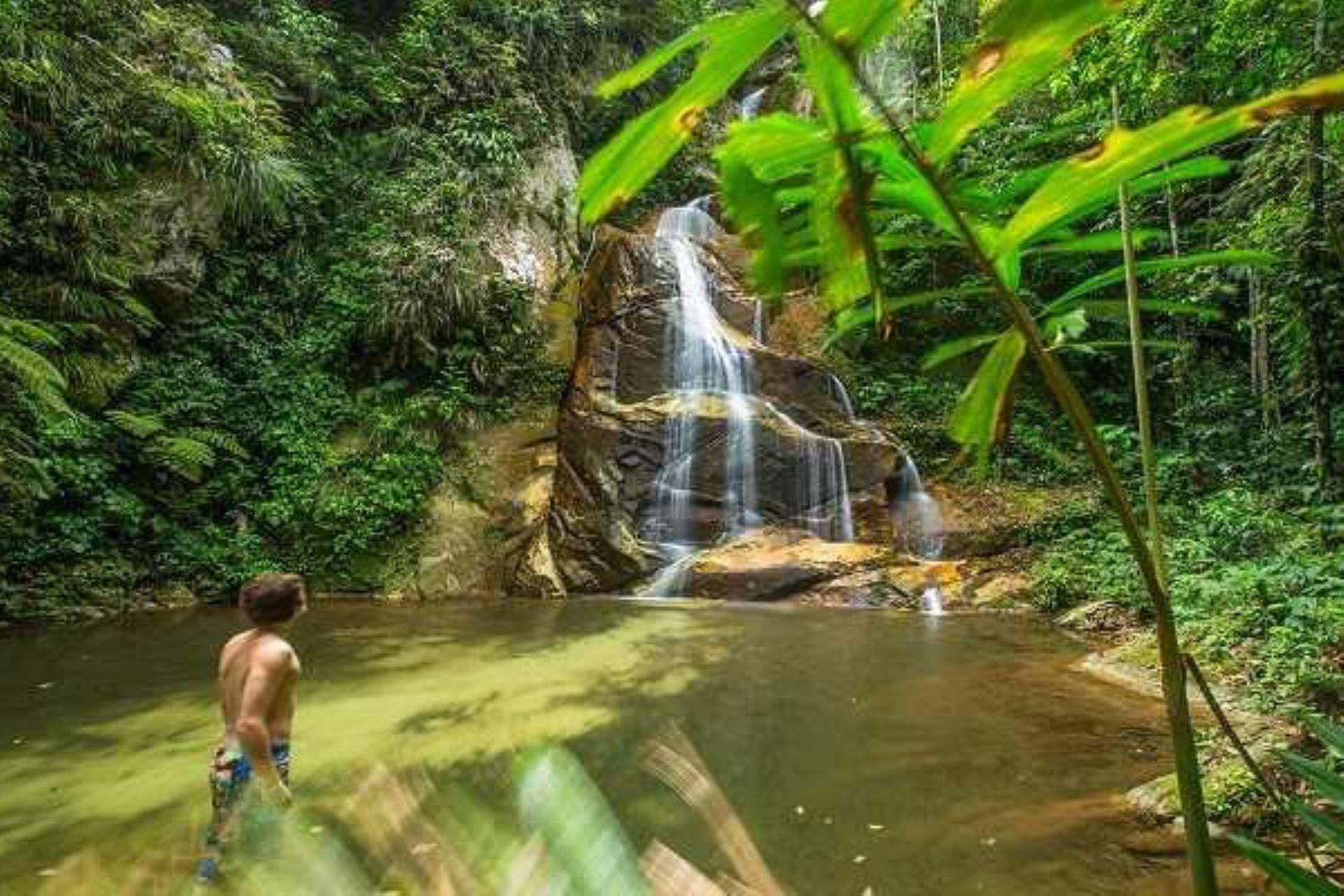La presencia de turistas al área de conservación regional Cordillera Escalera, en la región San Martín, aumentó en 61%, lo que generó ingresos económicos de 3 millones 37,655 soles, informó el Proyecto Especial Huallaga Central y Bajo Mayo, que administra esta área natural protegida.