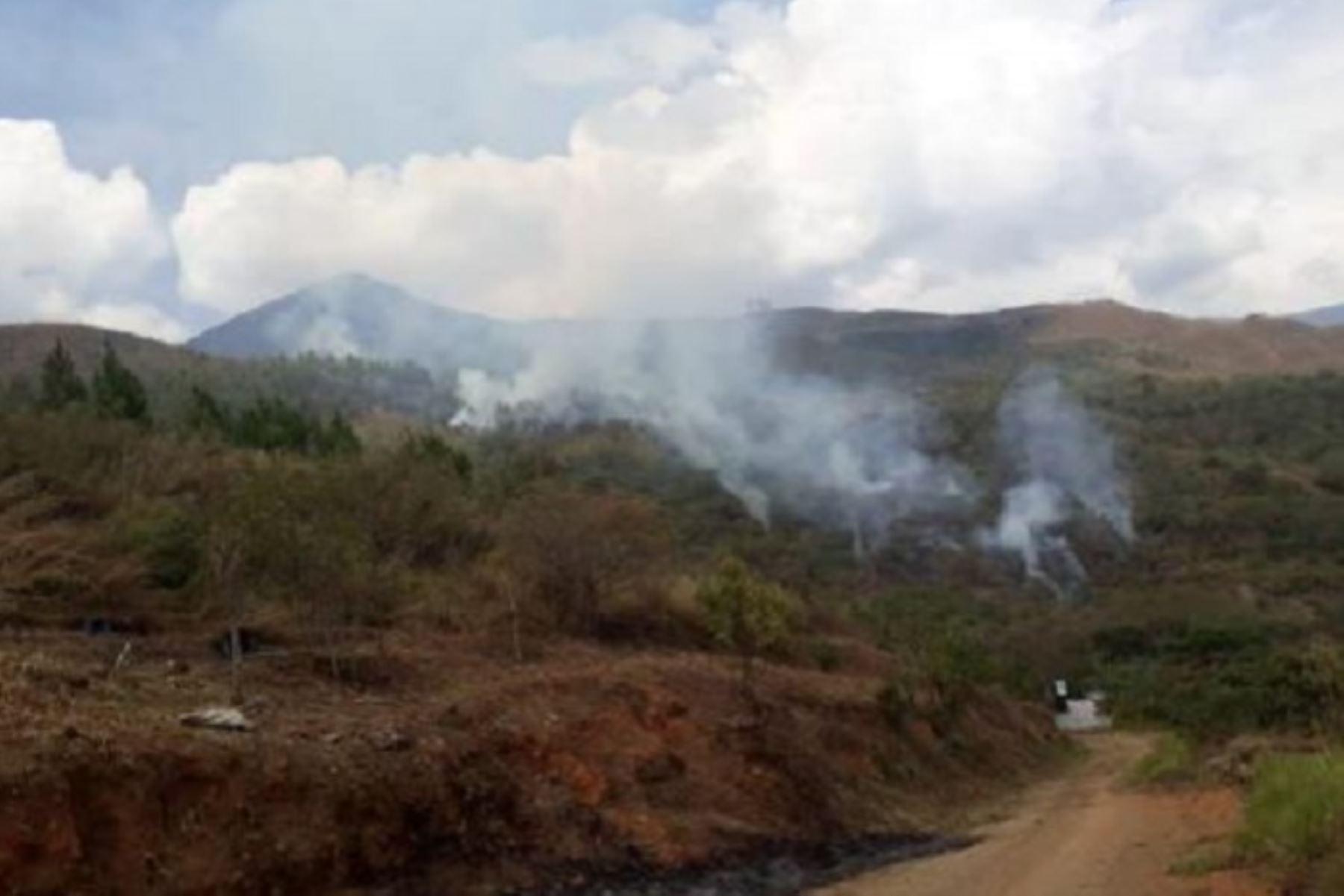 """Evitar las prácticas ancestrales como el """"rozo"""" o quema de residuos forestales, como malezas, pastos y arbustos para la habilitación de campos de cultivo. ANDINA/Archivo"""