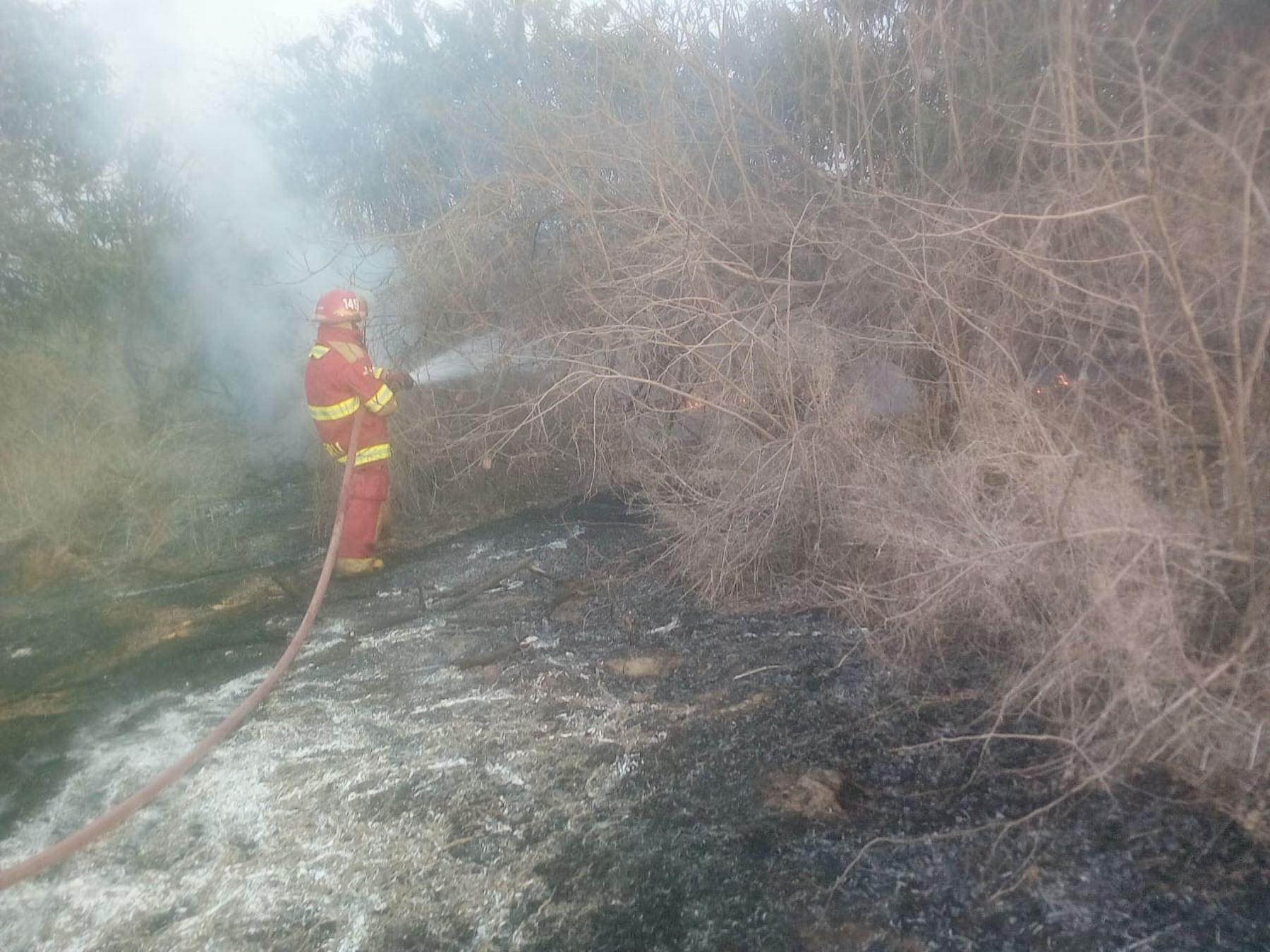 Un incendio forestal se reportó esta tarde en el sector Templón-Tres Cerritos, en el distrito de Salas, informó la Oficina Desconcentrada del Instituto Nacional de Defensa Civil (Indeci).