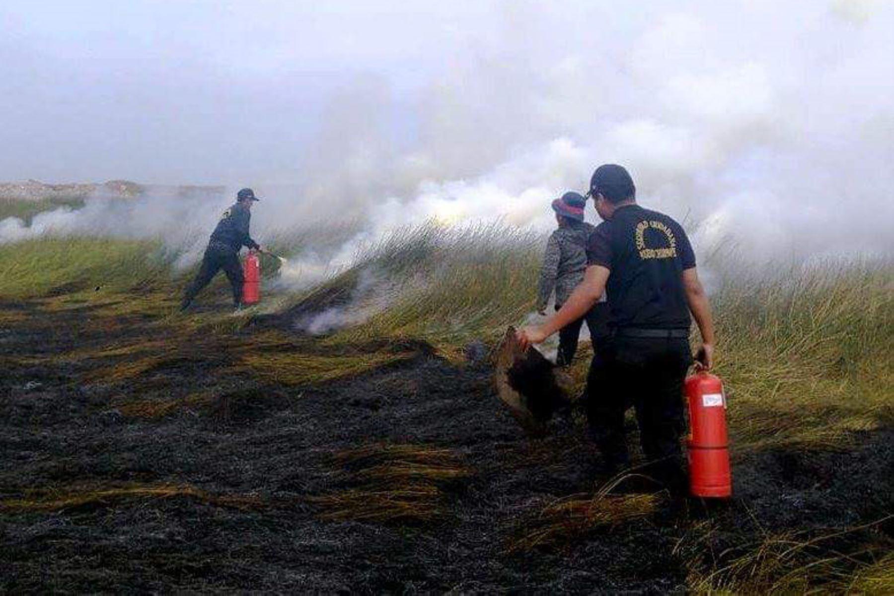 Controlan incendio forestal en pantanos de Villa María en Chimbote, Áncash. ANDINA