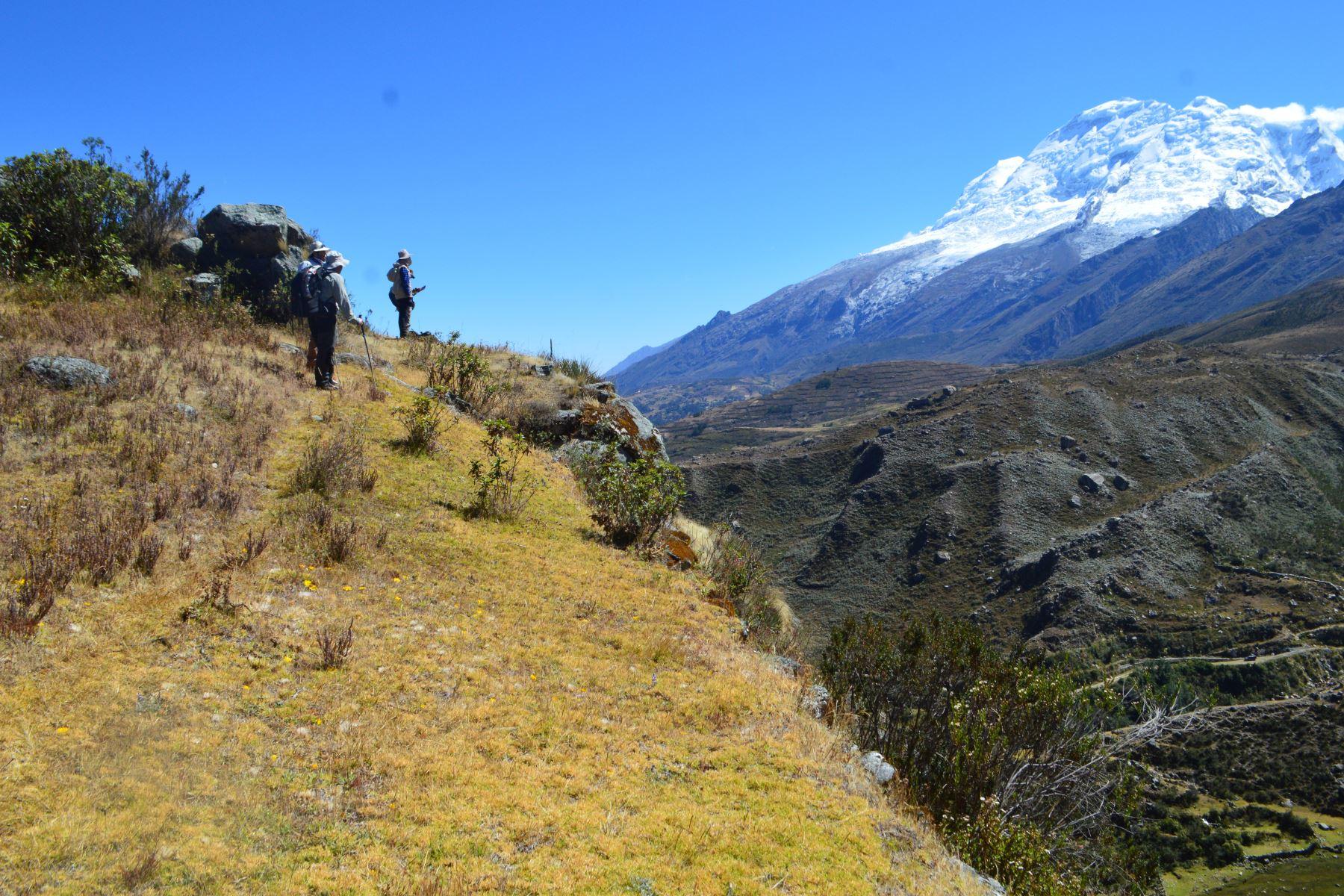 Investigadores del Ingemmet desarrollaron estudios de geomorfología para reconstruir cómo eran los glaciares del pasado. ANDINA/Ingemmet