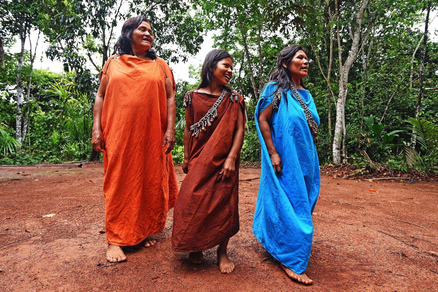 La finalidad del plan es contribuir a la reducción y contención de los impactos sanitario, social y económico de la pandemia en las comunidades indígenas y poblados rurales de la Amazonía. Foto: ANDINA/Difusión