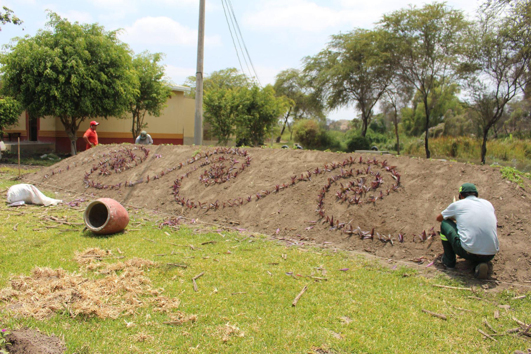 Embellecen con diseños prehispánicos del norte peruano las áreas verdes del Museo Huaca Rajada-Sipán, ubicado en el distrito chiclayano de Zaña.