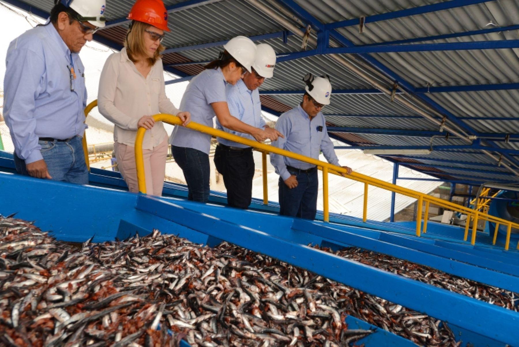 Ministro de la Producción Manuel Pérez-Reyes y la titular de la SNP, Elena Conterno visitan planta pesquera en Pisco. Foto: Cortesía.