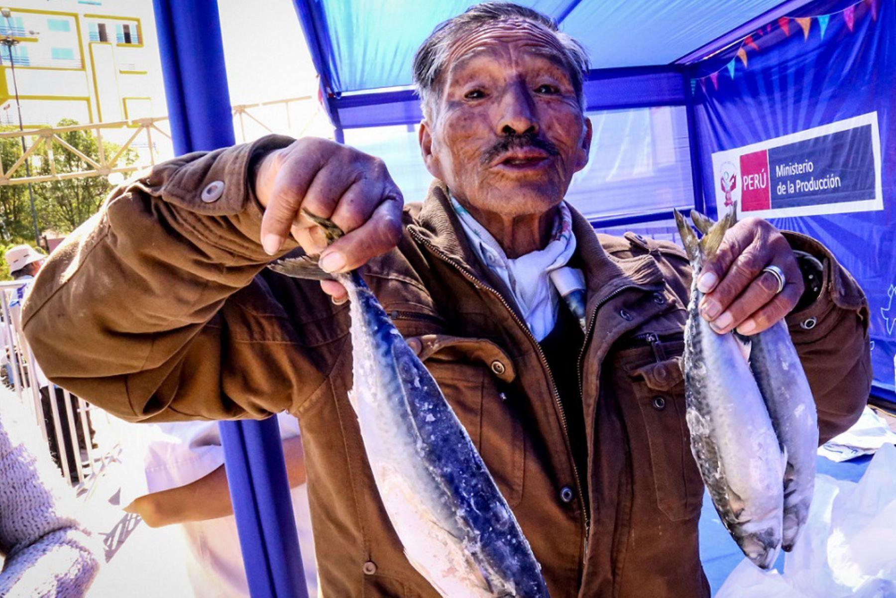 Ofrecerán pescados a precios cómodos en Chupaca, en Junín.