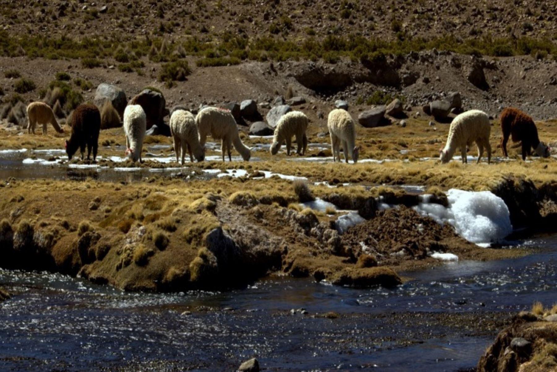 La temperatura nocturna descenderá en la Sierra desde este jueves 15, informó el Senamhi. Foto: ANDINA/Difusión