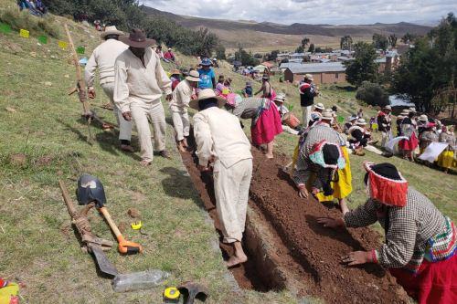 Con concurso promueven el tratamiento de cuencas altas de la región Puno. ANDINA/Difusión