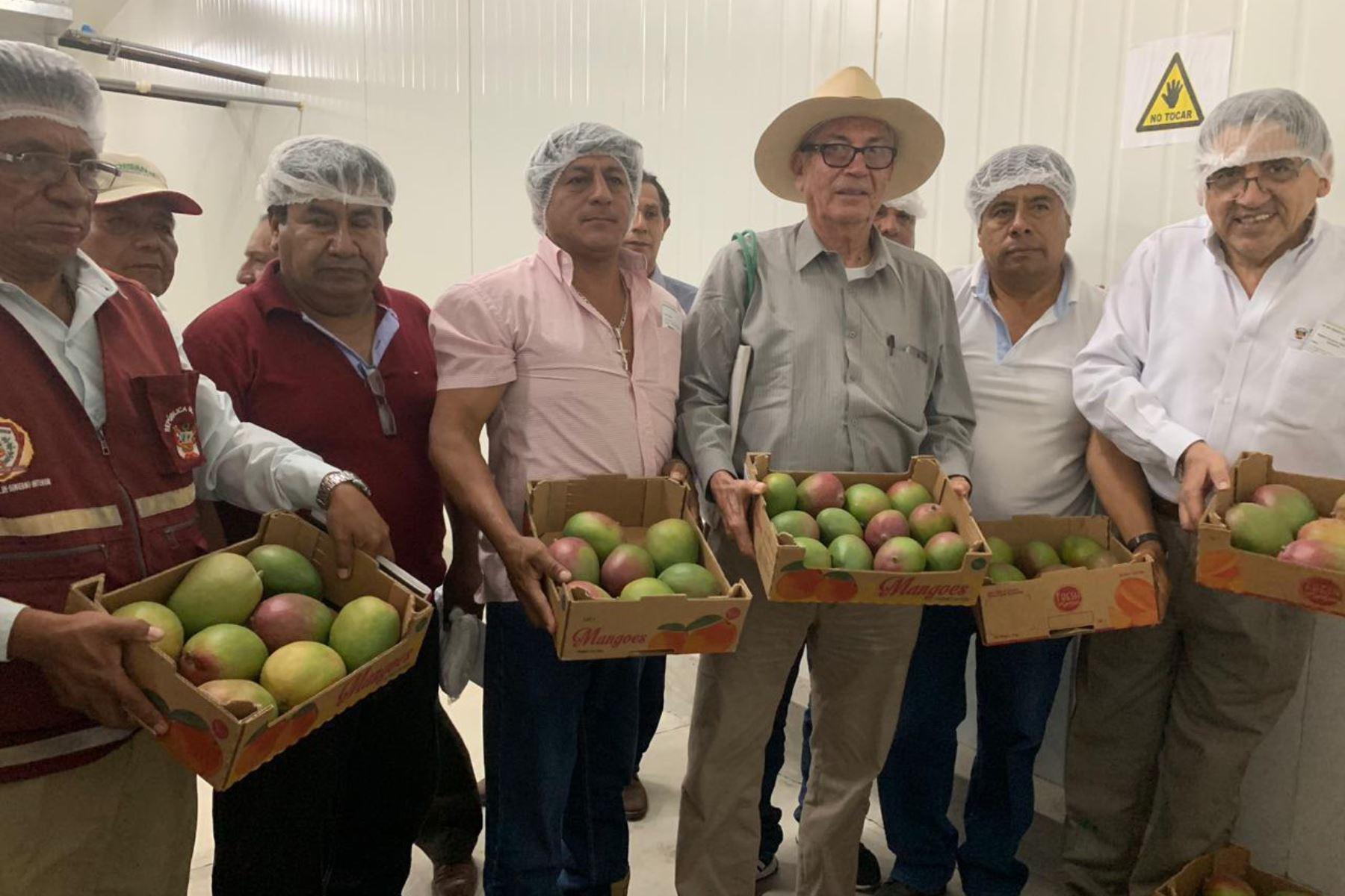 El viceministro de Políticas Agrarias del Minagri, William Arteaga, se reunió con productores de mango del valle de San Lorenzo.
