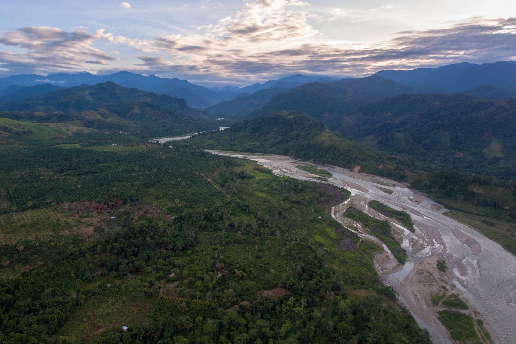 Área de conservación regional Bosques de Shunté y Moshollo (ACR Boshumi) se ubica en San Martín. Foto: Otto Alegre/SPDA