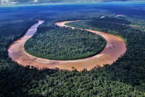 Día Mundial del Ambiente. El Perú ocupa el cuarto lugar en el planeta entre los países con mayor extensión en bosques tropicales, el segundo en bosques amazónicos y el noveno con mayor superficie forestal. ANDINA/Difusión