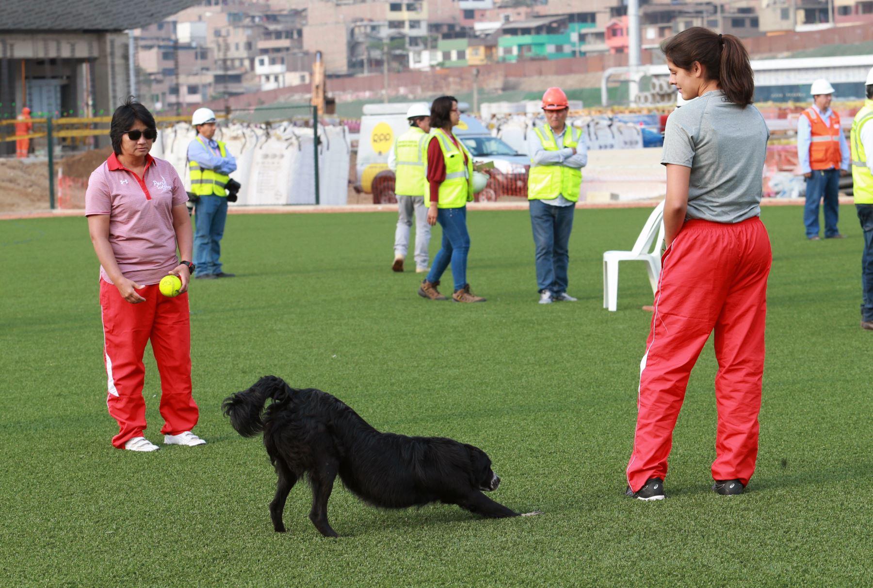 Selección Peruana de Softbol se prepara para los Juegos Panamericanos Lima 2019.Foto: ANDINA/Norman Córdova